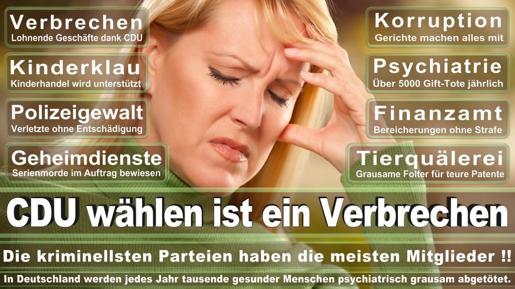 Landtagswahl-Mecklenburg-Vorpommern 2016 (64)