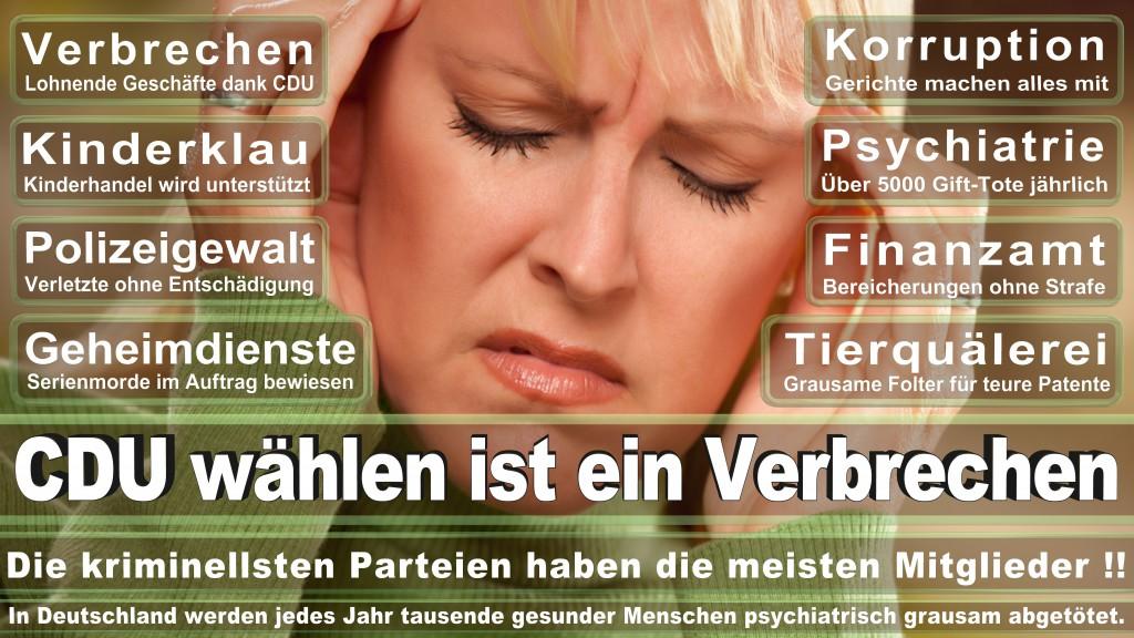 Landtagswahl-Mecklenburg-Vorpommern 2016 (66)