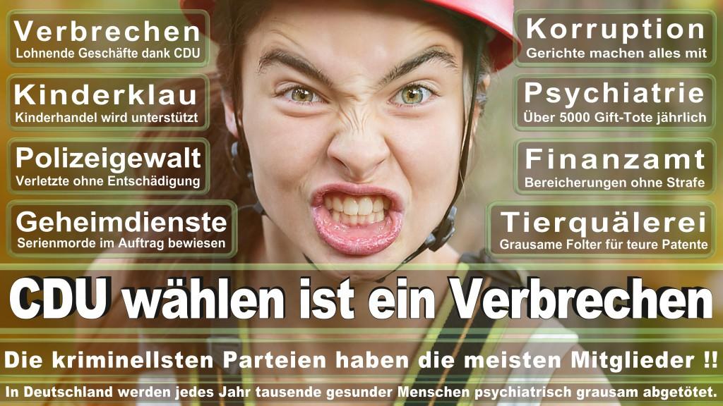 Landtagswahl-Mecklenburg-Vorpommern 2016 (67)