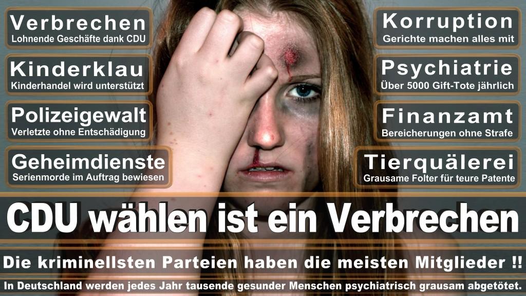 Landtagswahl-Mecklenburg-Vorpommern 2016 (68)