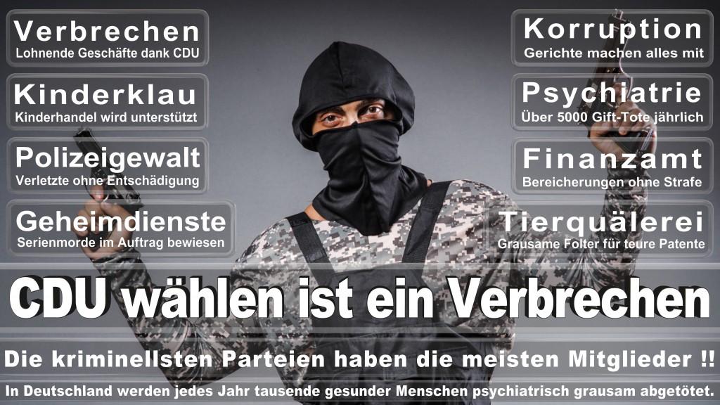 Landtagswahl Mecklenburg-Vorpommern 2016 CDU, Landtagswahl-Mecklenburg-Vorpommern 2016 (7)