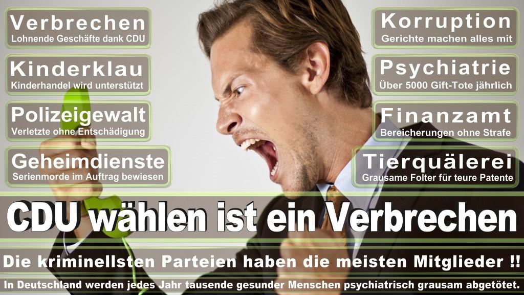 Landtagswahl-Mecklenburg-Vorpommern 2016 (70)
