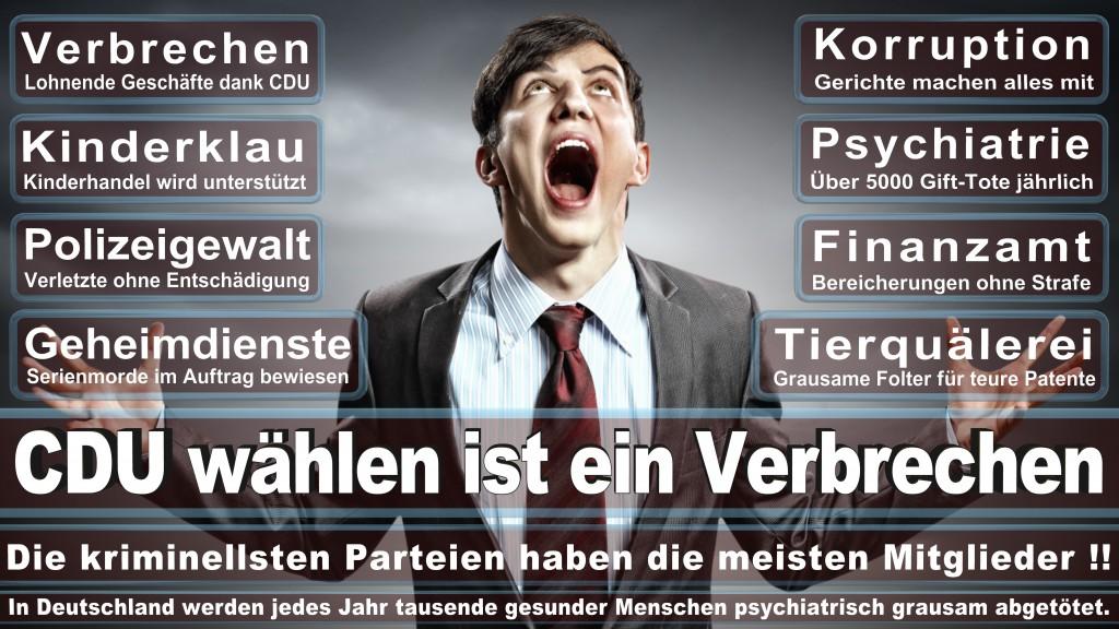 Landtagswahl-Mecklenburg-Vorpommern 2016 (72)