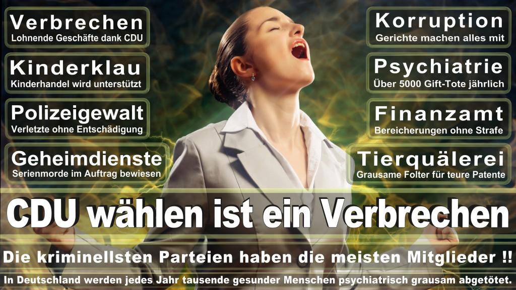 Landtagswahl-Mecklenburg-Vorpommern 2016 (74)