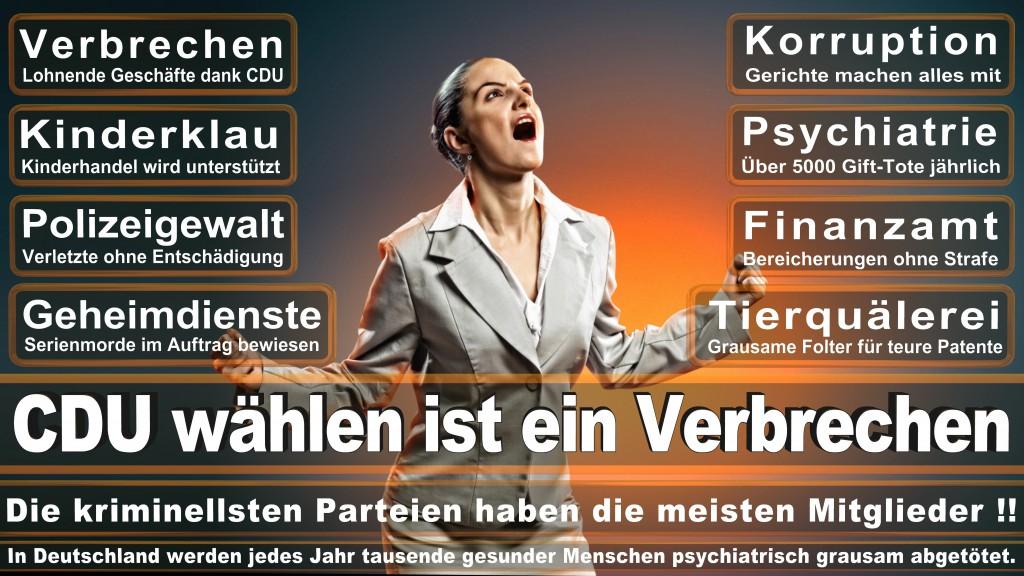 Landtagswahl-Mecklenburg-Vorpommern 2016 (76)