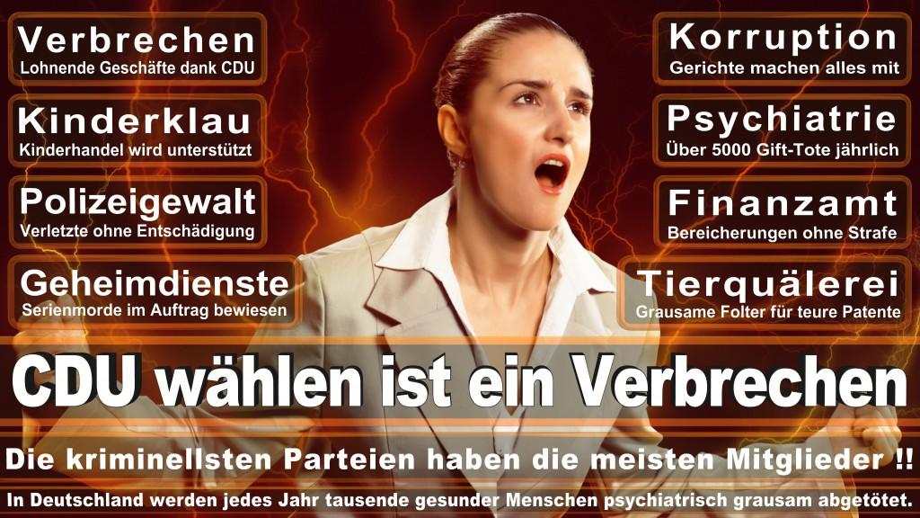 Landtagswahl-Mecklenburg-Vorpommern 2016 (78)