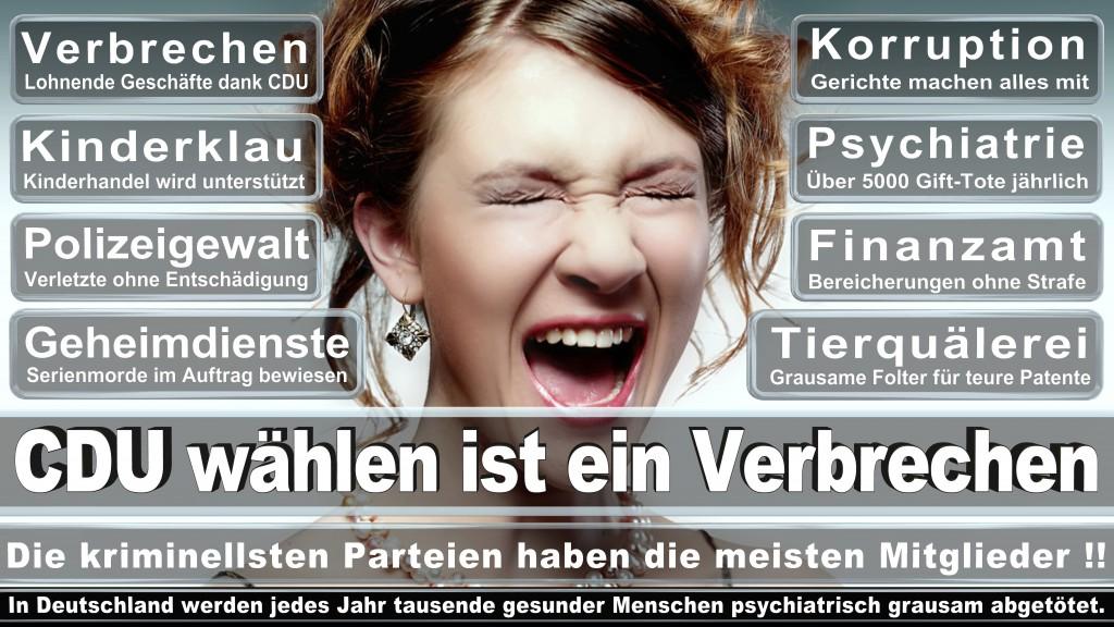 Landtagswahl-Mecklenburg-Vorpommern 2016 (82)