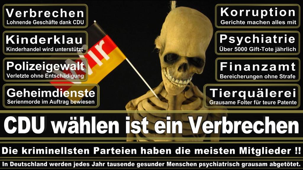 Landtagswahl-Mecklenburg-Vorpommern 2016 (84)