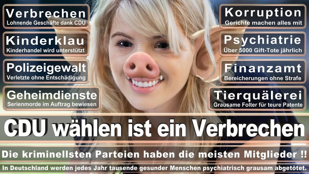 Landtagswahl-Mecklenburg-Vorpommern 2016 (87)