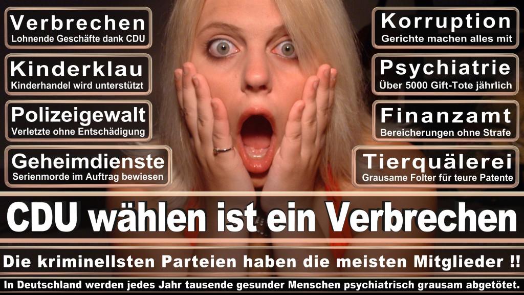 Landtagswahl-Mecklenburg-Vorpommern 2016 (88)