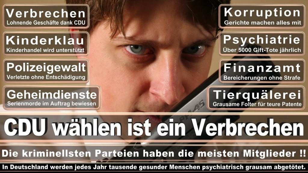 Landtagswahl-Mecklenburg-Vorpommern 2016 (89)