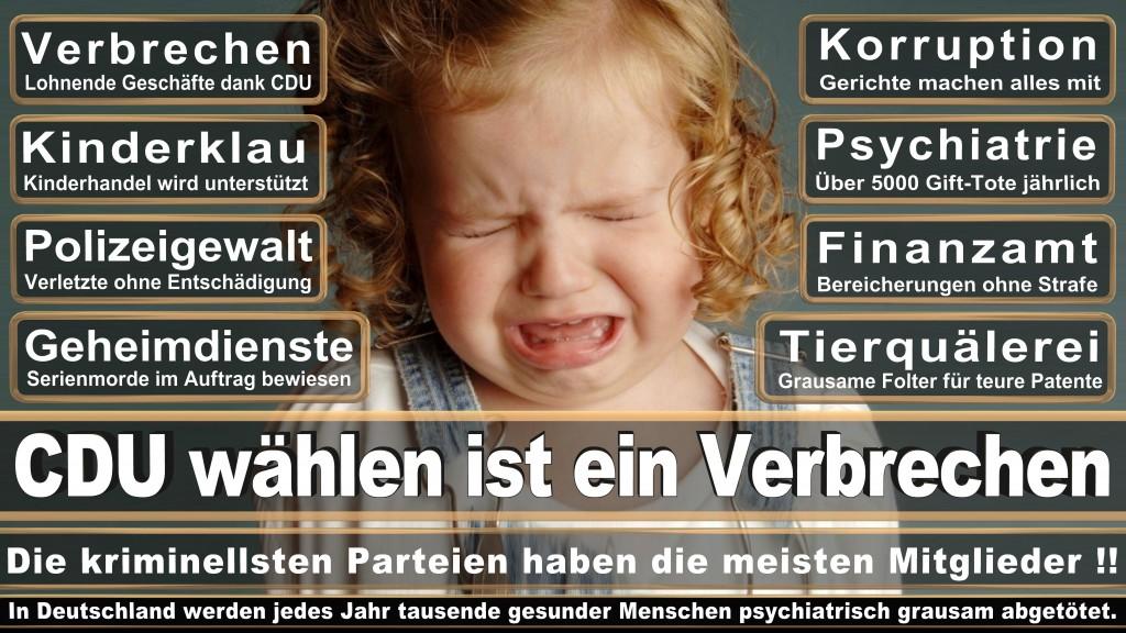 Landtagswahl-Mecklenburg-Vorpommern 2016 (92)