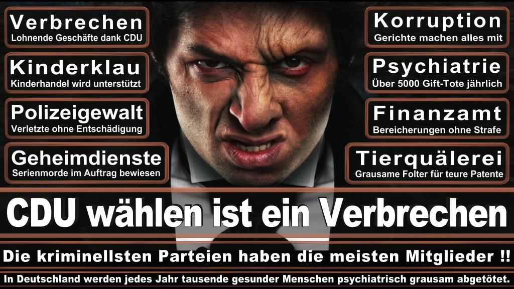 Landtagswahl-Mecklenburg-Vorpommern 2016 (95)