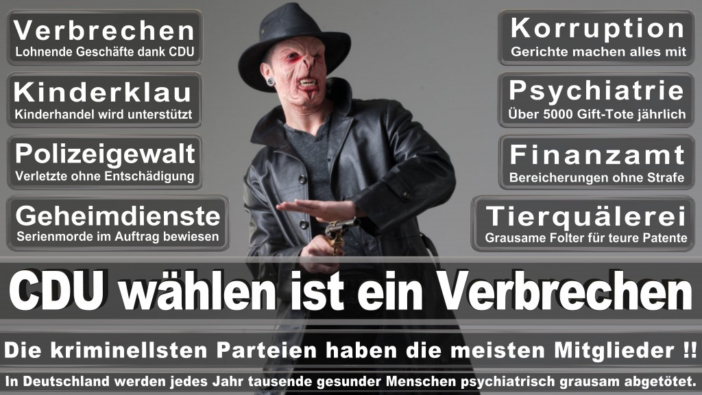 Landtagswahl-Mecklenburg-Vorpommern 2016 (96)