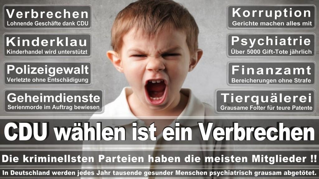Landtagswahl-Mecklenburg-Vorpommern 2016 (99)